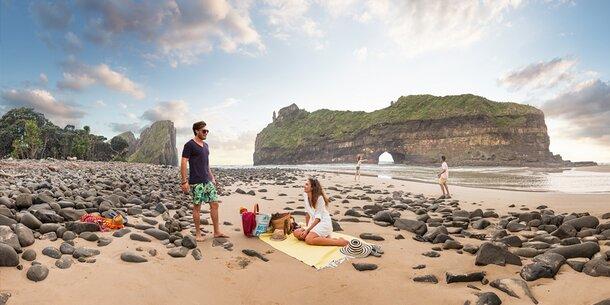 Starte jetzt deine Strand-Safari