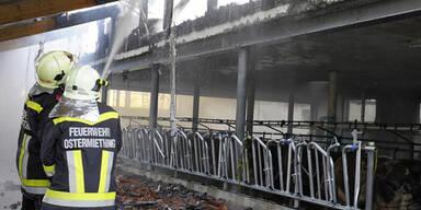 Blitzschlag: Brand auf Anwesen in Tarsdorf