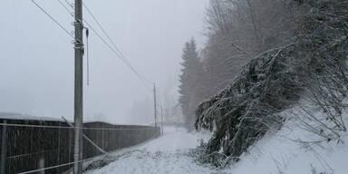 Verkehrsbehinderungen Salzburg