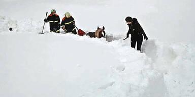 Scheibbs Pferd ausgeschaufelt Schnee