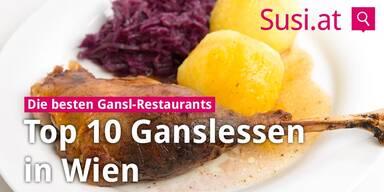 2017-10-23_Konsole-Top10-Ganslessen-Wien.jpg