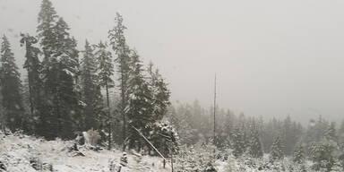 Schnee Handalm Steiermark