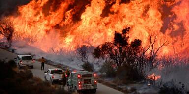 Waldbrand Kalifornien Los Angeles L.A.