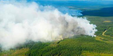 Waldbrände Schweden
