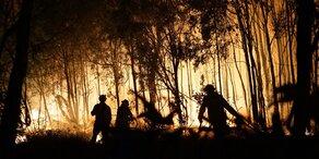 Freiwilliger Helfer (21) in australischer Flammen-Hölle gestorben