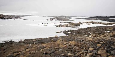 Island Gletscher Okojokull