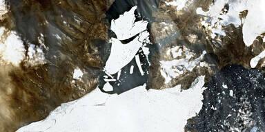 Mega-Eisbrocken vom größten Gletscher Grönlands abgebrochen
