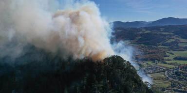 15 Feuerwehren kämpfen gegen Waldbrand in NÖ