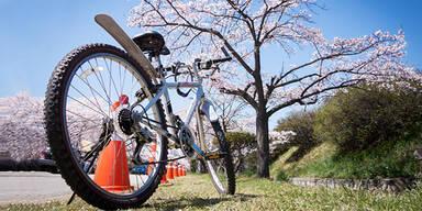 Fahrrad im Frühling