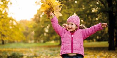 Herbst Oktober Goldener Herbstwetter Wetter