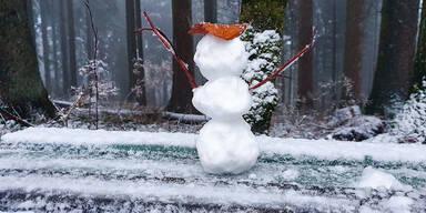 Schnee Linz