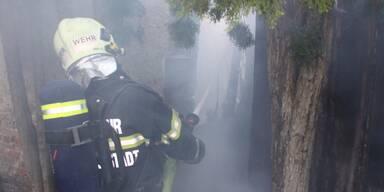 Großeinsatz der Feuerwehr in Wiener Neustadt