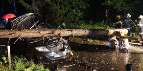 Baum stürzte auf Auto mit vier Insassen