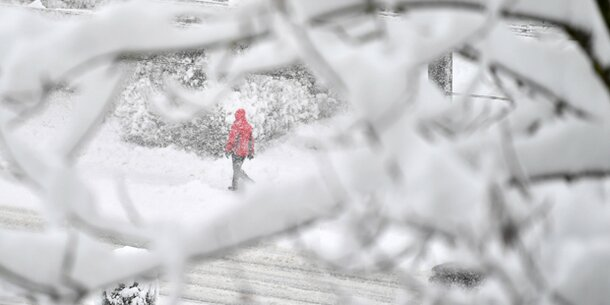 Schnee-Drama: Bub (9) von Baum erschlagen