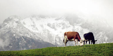 Salzburger uNtersberg