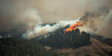 APATOPSHOTS---SPAIN---FIRE-.jpg