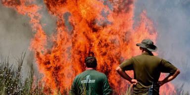 Spanien Waldbrände