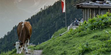 Achensee - Tirol-CH - ADV - SL - Tiroler Sommerfrische Berg Natur