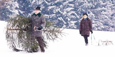 Schnee Winter Wetter Christbaum