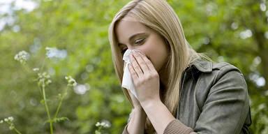 Pollen Allergie Frühling Schnupfen Frau