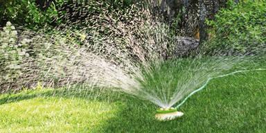 Bewässerungstechnik-Berater.jpg