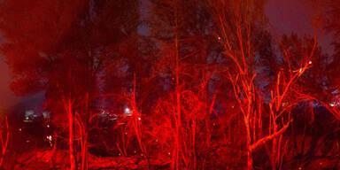 Feuer_AFP2.jpg