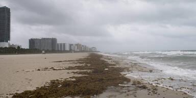 Florida Wellen Irma