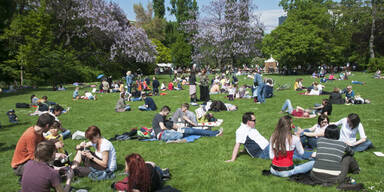 Frühling Wien Stadtpark