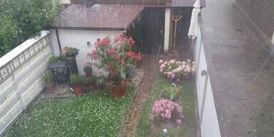 GartenRegen.jpg
