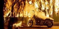 631 Vermisste in der kalifornischen Feuer-Hölle