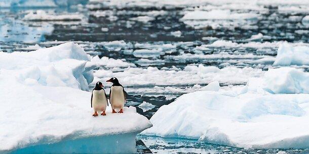 Schock: Meeresspiegel verdreifacht sich