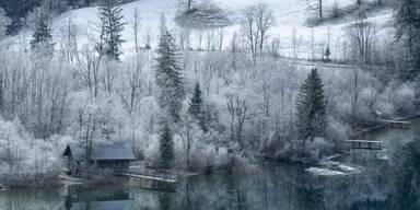 Lunzer See Winter