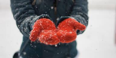 Winter Schneefall Kälte