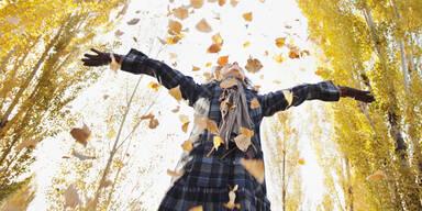Goldener Herbst Sonne Hitze