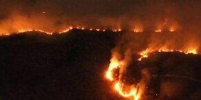 Amazonas-Waldbrände immer schlimmer