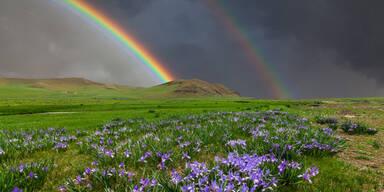 Regenbogen Bewölkt Frühling