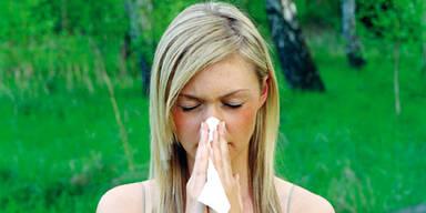 Allergie Pollen Heu Schnupfen