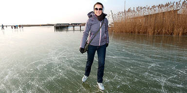 Neusiedlersee Eislaufen Kälte Frost
