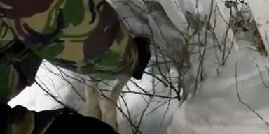 Hase Zaun gefroren Kasachstan