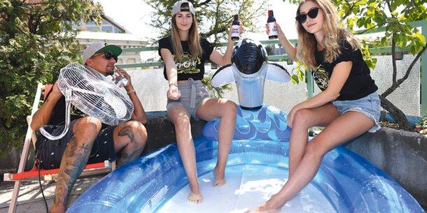 Erstmals hitzefrei für Wiener Fiakerpferde