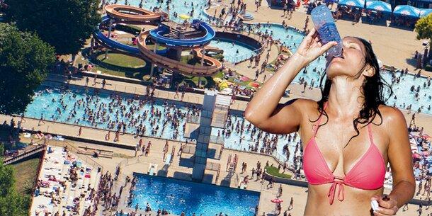 Heißzeit: 210 Mio. Euro Schaden durch Hitze