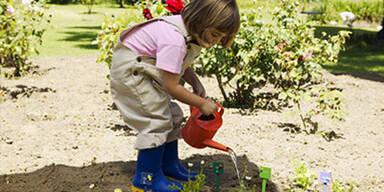 Kinderpflanzen-Berater.jpg