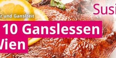 Konsole-wetterat-susi-Ganslzeit.png