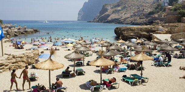 41-Jährige in Urlaubsparadies von Palme erschlagen