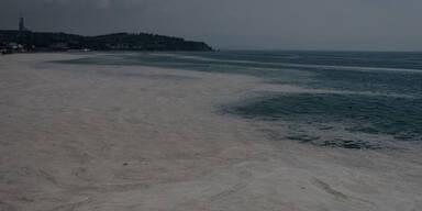 Experte: 'Das Marmarameer ist jetzt ein totes Meer'