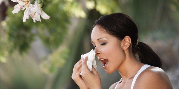 Sonne lässt Pollen explodieren