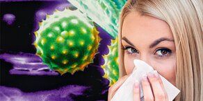 Jetzt Pollen-Alarm in Österreich