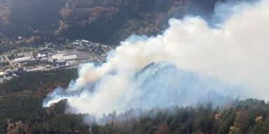 Rax: Größter Waldbrand der Geschichte