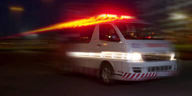 Mit Auto gegen Werbetafel geprallt: Drei Verletzte in NÖ