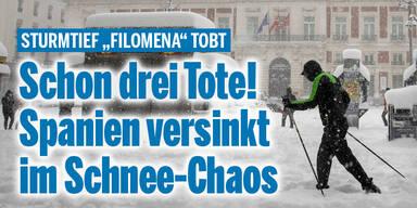 Schnee-Chaos.jpg